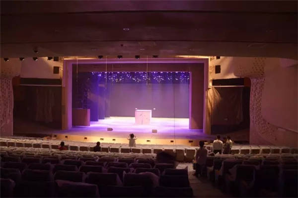 桃花水母大剧院舞台音响灯光视频大揭秘图片